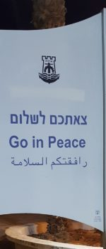 go-in-peacemini